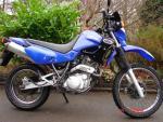 XT600E 017 (Large)